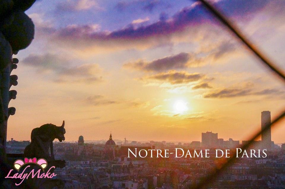 巴黎景點》巴黎聖母院免預約登頂/怪獸與夕陽重現鐘樓怪人完美氣氛