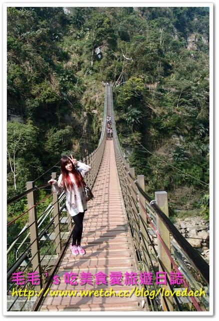 南投天梯 – 溪頭妖怪村2日遊 》從天梯重見台灣山林的美