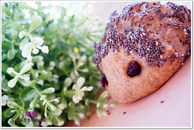 食譜 》小刺蝟麵包♥超萌相似度99%。健康低油低糖版,奇亞籽與五穀粉的合體可愛誕生(低溫發酵法)毛毛超萌手做烘焙