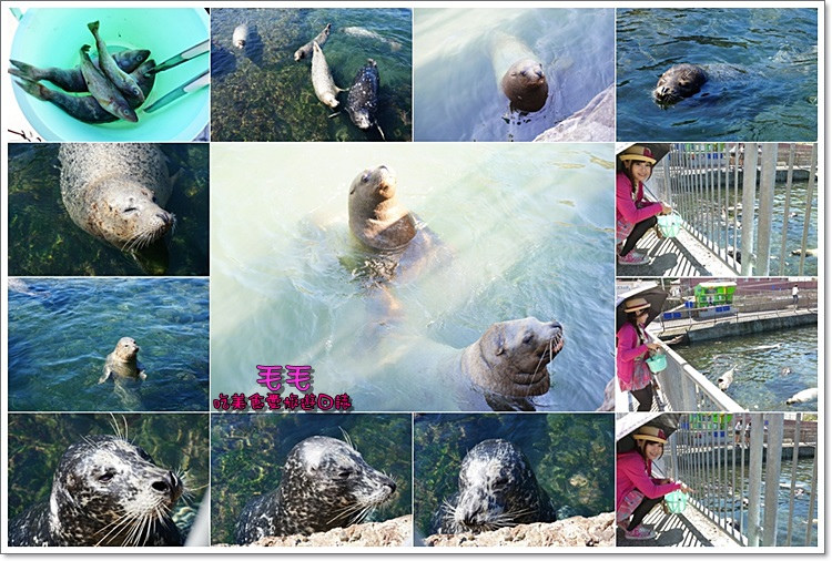 小樽水族館7